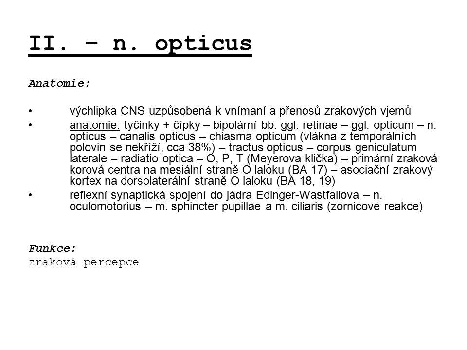 II. – n. opticus Anatomie: výchlipka CNS uzpůsobená k vnímaní a přenosů zrakových vjemů anatomie: tyčinky + čípky – bipolární bb. ggl. retinae – ggl.