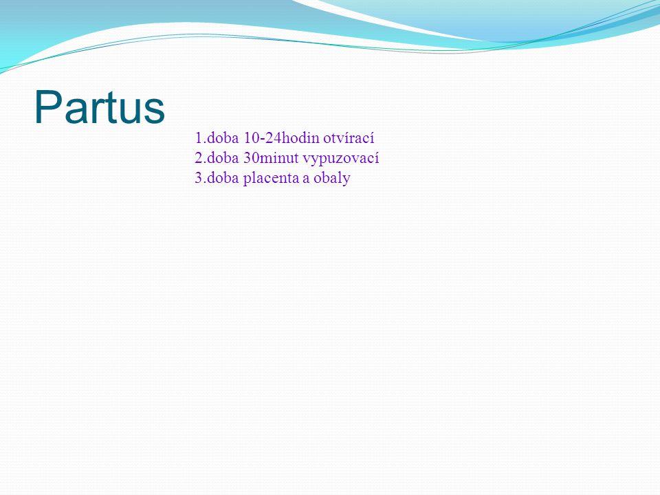 Partus 1.doba 10-24hodin otvírací 2.doba 30minut vypuzovací 3.doba placenta a obaly