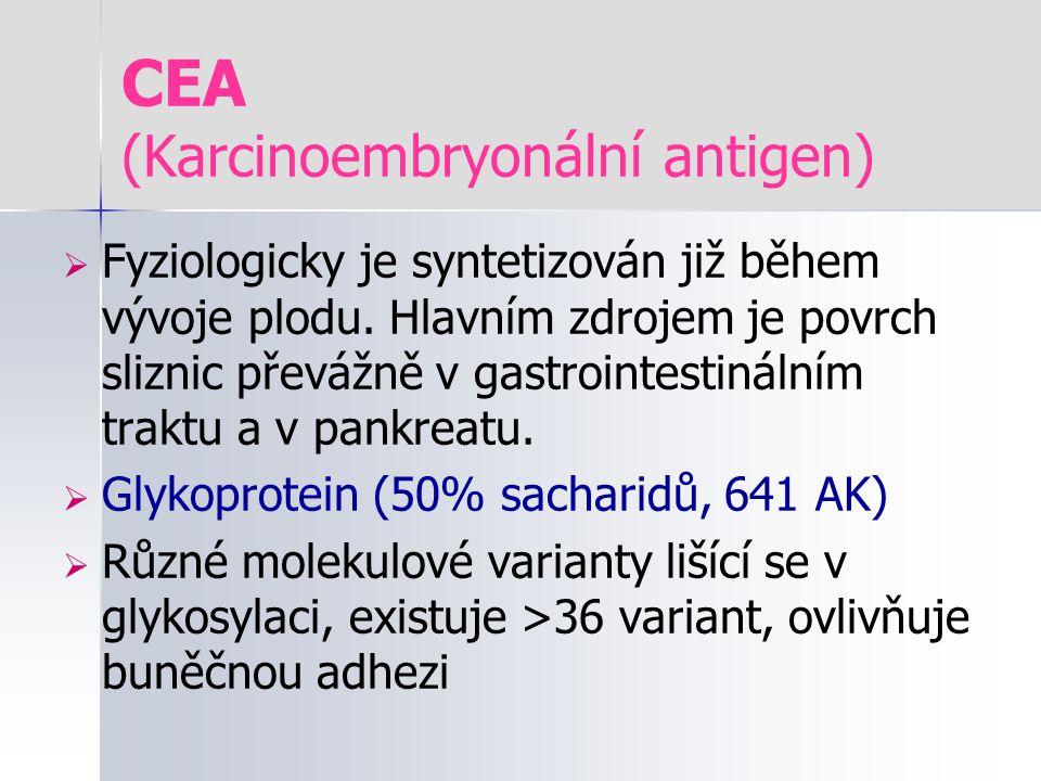 CEA (Karcinoembryonální antigen)  Fyziologicky je syntetizován již během vývoje plodu. Hlavním zdrojem je povrch sliznic převážně v gastrointestináln