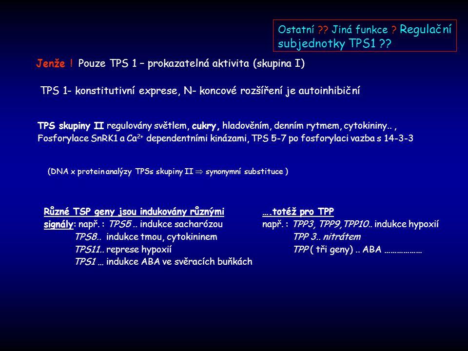 Jenže !Pouze TPS 1 – prokazatelná aktivita (skupina I) (DNA x protein analýzy TPSs skupiny II  synonymní substituce ) TPS 1- konstitutivní exprese, N