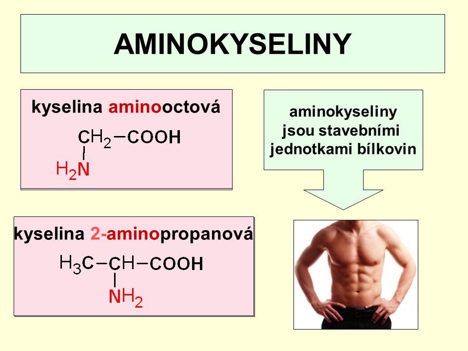 kyselina octovákyselina propanová AMINOKYSELINY aminokyseliny jsou stavebními jednotkami bílkovin kyselina aminooctovákyselina 2-aminopropanová