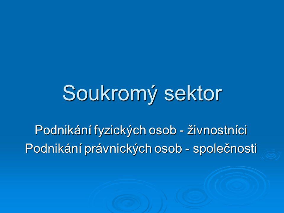 Soukromý sektor Podnikání fyzických osob - živnostníci Podnikání právnických osob - společnosti