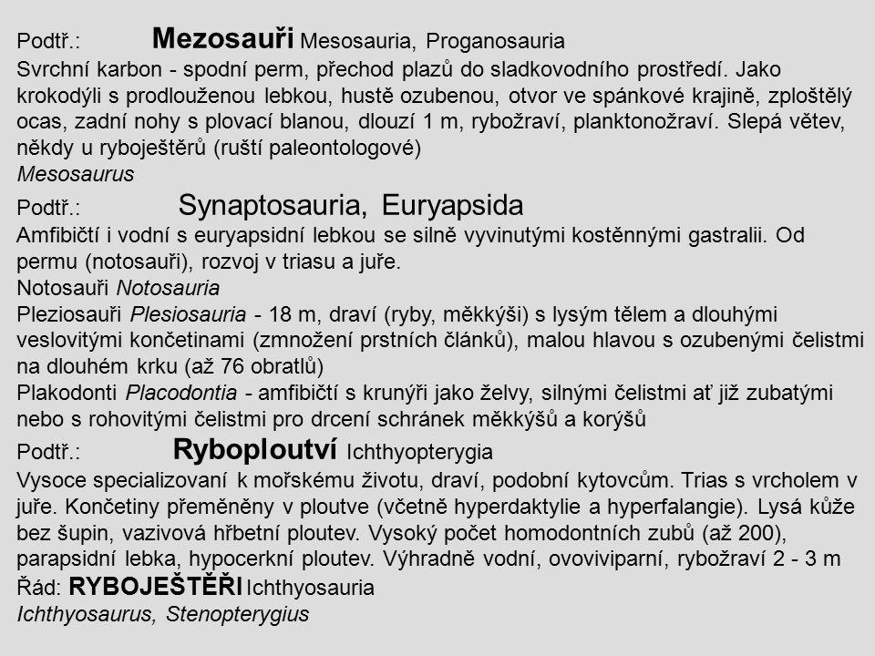 Podtř.: Mezosauři Mesosauria, Proganosauria Svrchní karbon - spodní perm, přechod plazů do sladkovodního prostředí. Jako krokodýli s prodlouženou lebk
