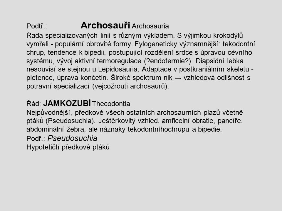 Podtř.: Archosauři Archosauria Řada specializovaných linií s různým výkladem. S výjimkou krokodýlů vymřeli - populární obrovité formy. Fylogeneticky v