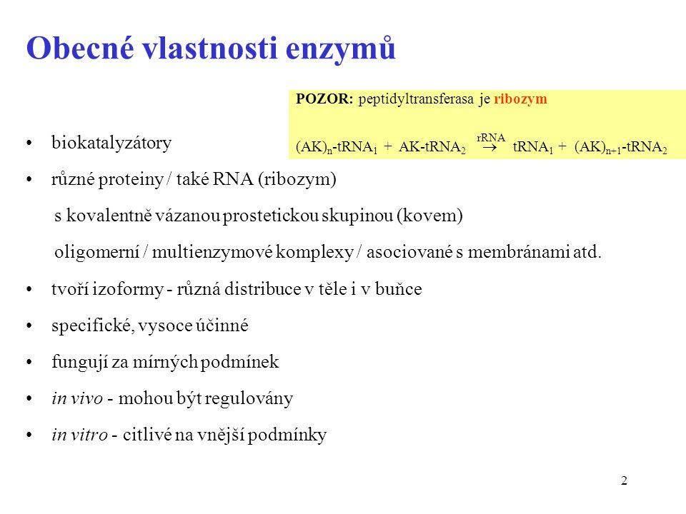 83 Kreatinkinasa (CK) je dimer a tvoří tři izoenzymy IzoenzymVýskytProcento celk.