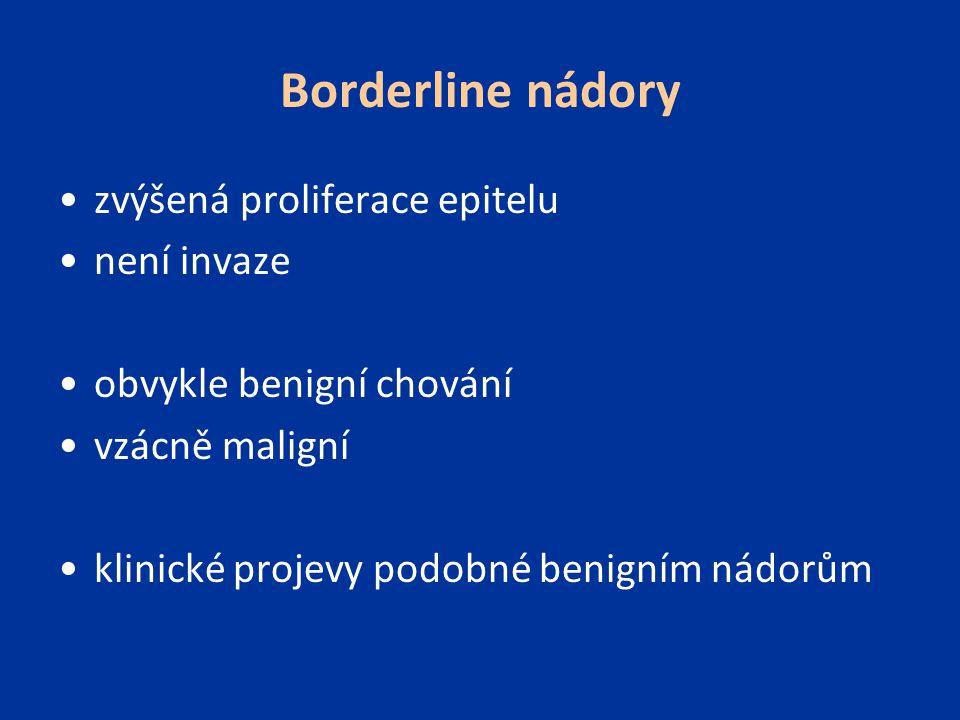 Borderline nádory zvýšená proliferace epitelu není invaze obvykle benigní chování vzácně maligní klinické projevy podobné benigním nádorům