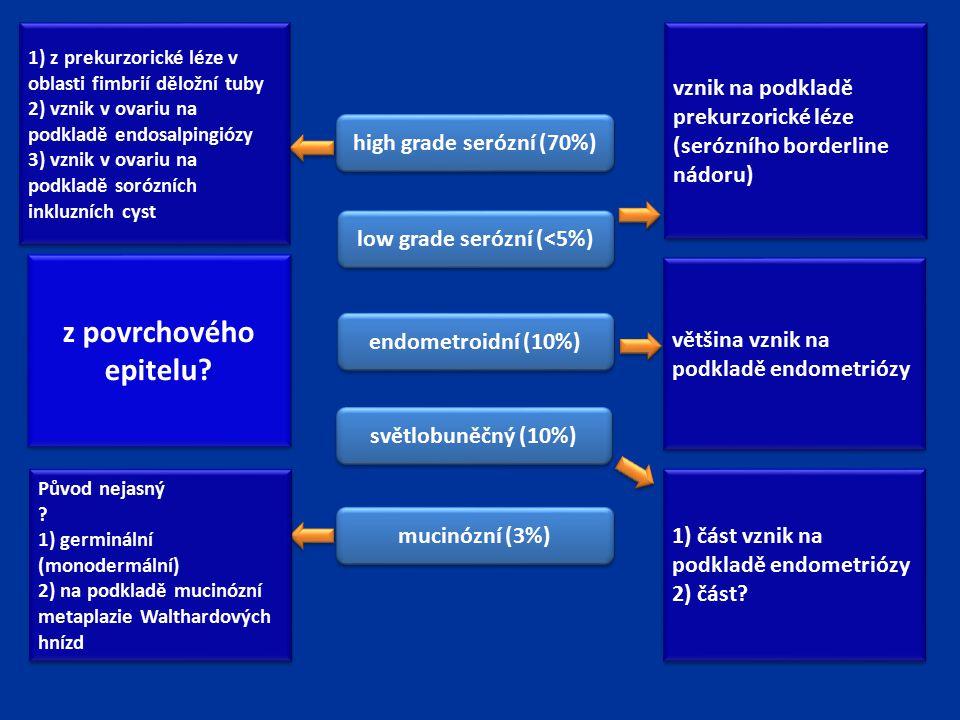 z povrchového epitelu? světlobuněčný (10%) endometroidní (10%) high grade serózní (70%) low grade serózní (<5%) mucinózní (3%) 1) z prekurzorické léze