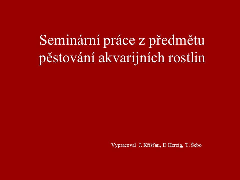 Seminární práce z předmětu pěstování akvarijních rostlin Vypracoval J. Kříšťan, D Hercig, T. Šebo