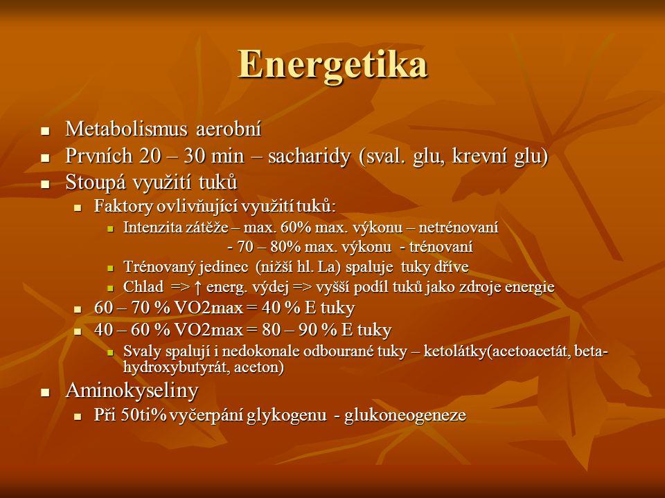 Energetika Metabolismus aerobní Metabolismus aerobní Prvních 20 – 30 min – sacharidy (sval. glu, krevní glu) Prvních 20 – 30 min – sacharidy (sval. gl