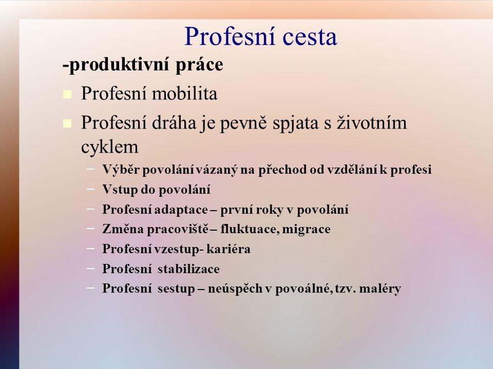Profesní cesta -produktivní práce Profesní mobilita Profesní dráha je pevně spjata s životním cyklem – Výběr povolání vázaný na přechod od vzdělání k profesi – Vstup do povolání – Profesní adaptace – první roky v povolání – Změna pracoviště – fluktuace, migrace – Profesní vzestup- kariéra – Profesní stabilizace – Profesní sestup – neúspěch v povoálné, tzv.