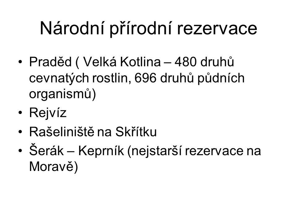 Národní přírodní rezervace Praděd ( Velká Kotlina – 480 druhů cevnatých rostlin, 696 druhů půdních organismů) Rejvíz Rašeliniště na Skřítku Šerák – Keprník (nejstarší rezervace na Moravě)