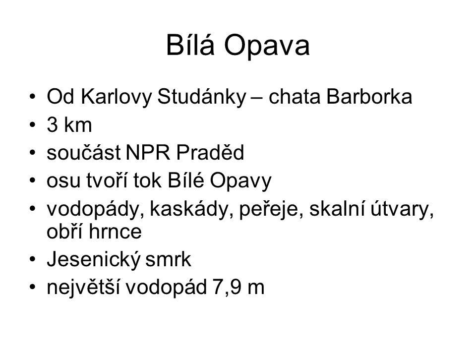 Bílá Opava Od Karlovy Studánky – chata Barborka 3 km součást NPR Praděd osu tvoří tok Bílé Opavy vodopády, kaskády, peřeje, skalní útvary, obří hrnce Jesenický smrk největší vodopád 7,9 m