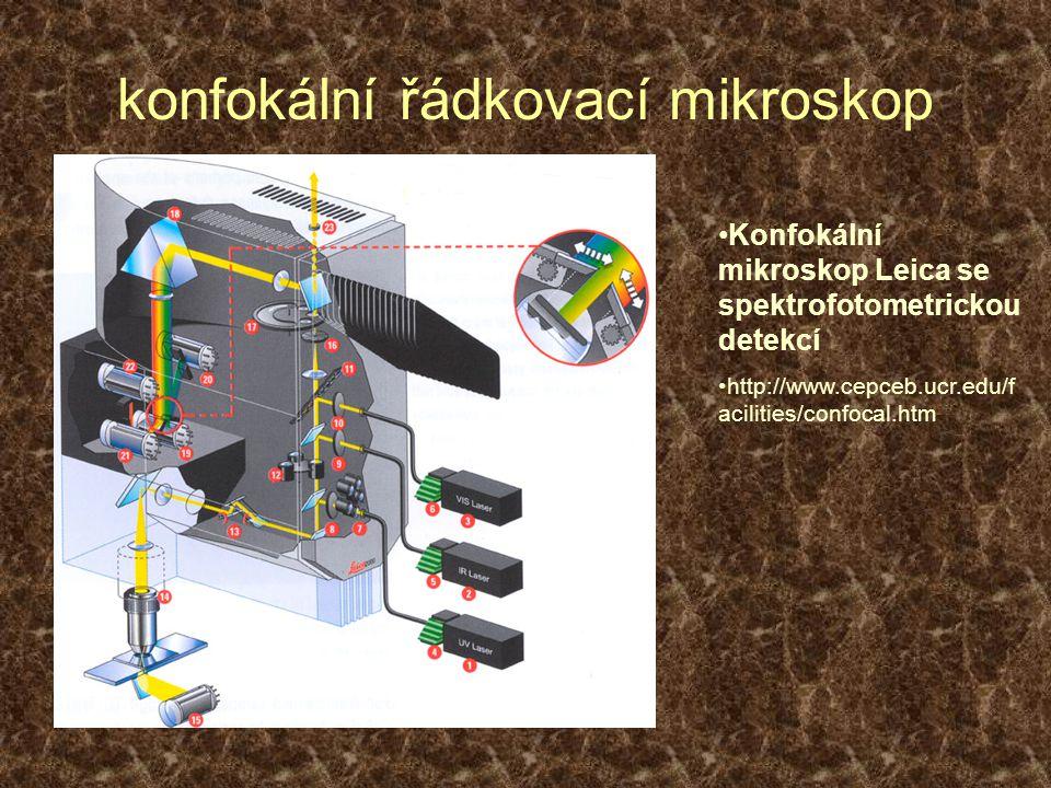 konfokální řádkovací mikroskop Konfokální mikroskop Leica se spektrofotometrickou detekcí http://www.cepceb.ucr.edu/f acilities/confocal.htm