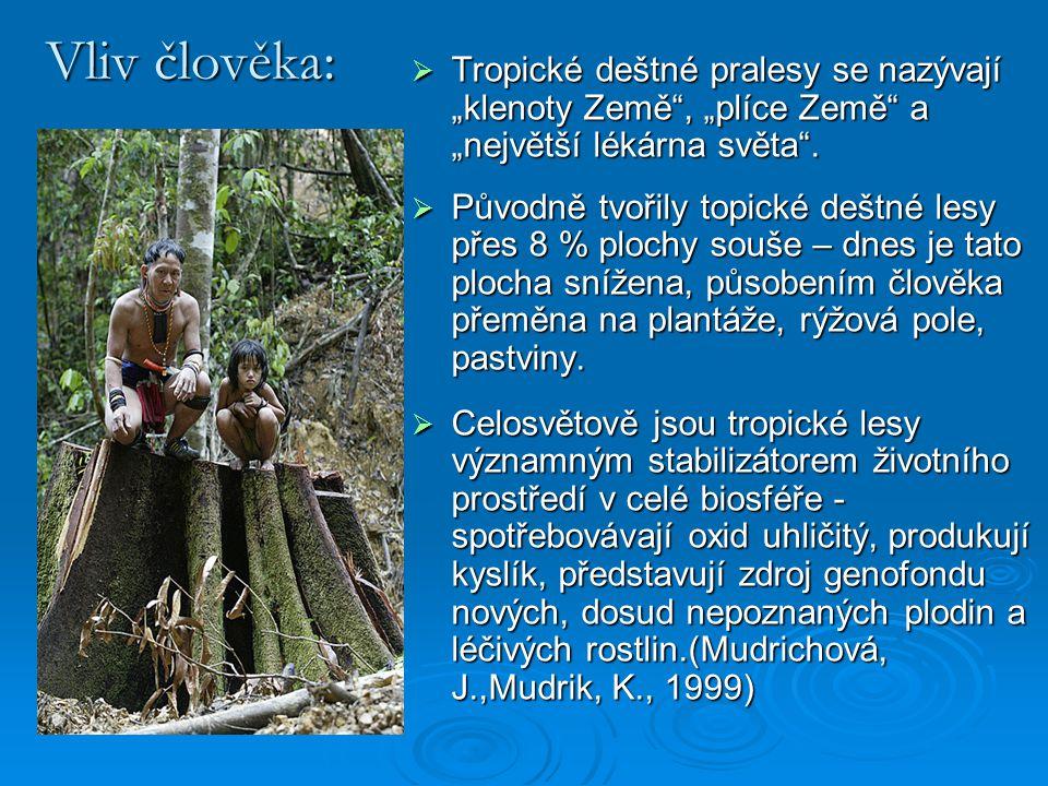 """Vliv člověka:  Tropické deštné pralesy se nazývají """"klenoty Země"""", """"plíce Země"""" a """"největší lékárna světa"""".  Původně tvořily topické deštné lesy pře"""