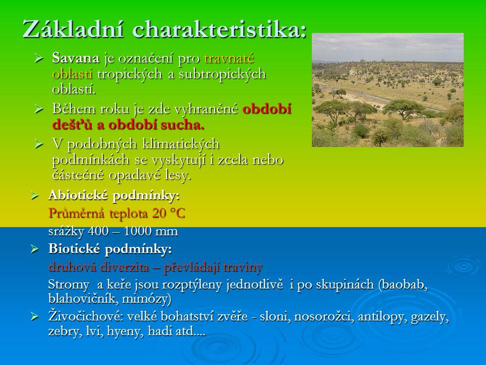 Základní charakteristika:  Savana je označení pro travnaté oblasti tropických a subtropických oblastí.  Během roku je zde vyhraněné období dešťů a o