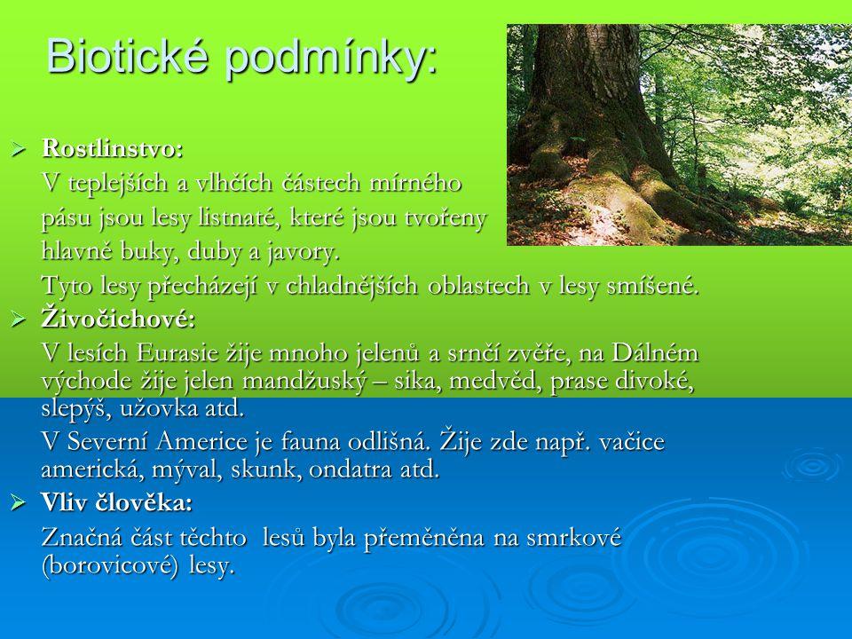 Biotické podmínky:  Rostlinstvo: V teplejších a vlhčích částech mírného pásu jsou lesy listnaté, které jsou tvořeny hlavně buky, duby a javory. Tyto