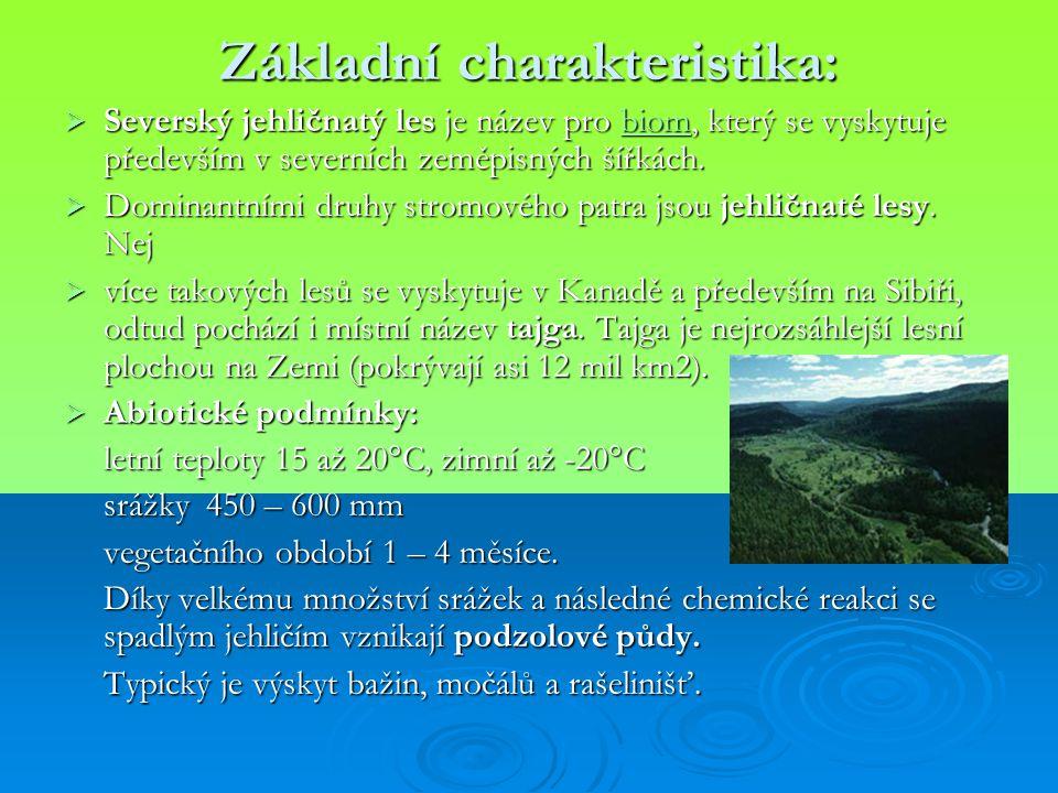 Základní charakteristika:  Severský jehličnatý les je název pro biom, který se vyskytuje především v severních zeměpisných šířkách. biom  Dominantní