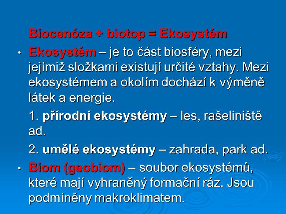 Děkuji za pozornost Helena Jedličková