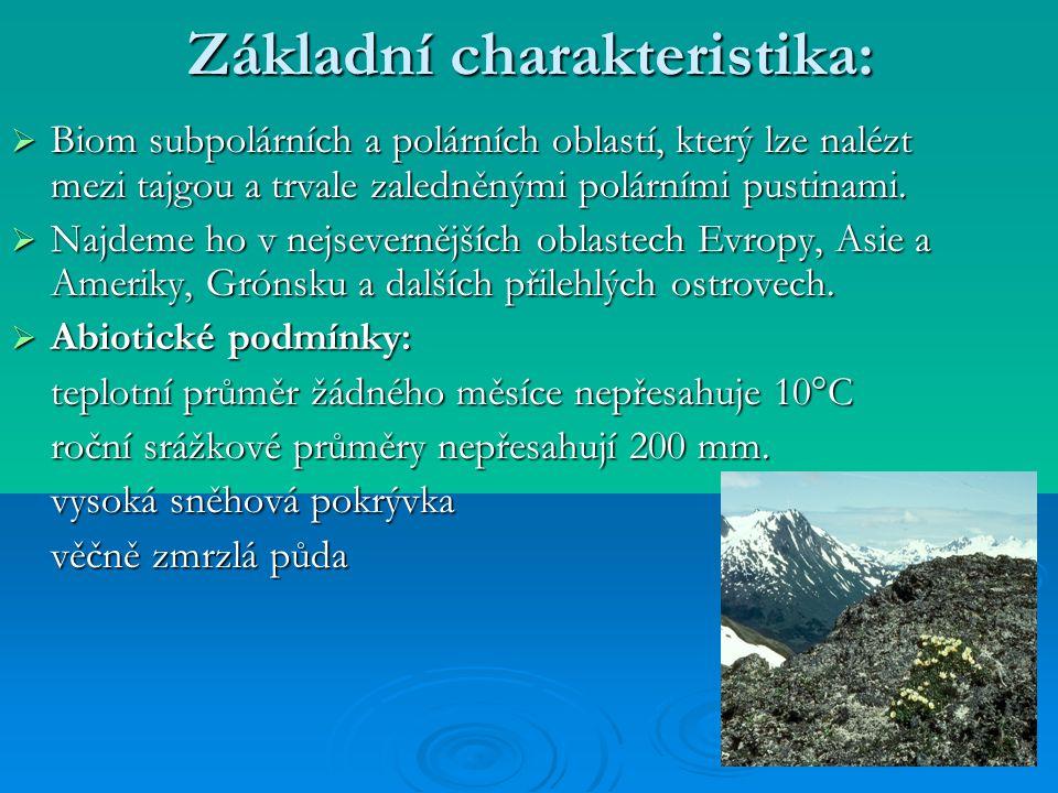 Základní charakteristika:  Biom subpolárních a polárních oblastí, který lze nalézt mezi tajgou a trvale zaledněnými polárními pustinami.  Najdeme ho