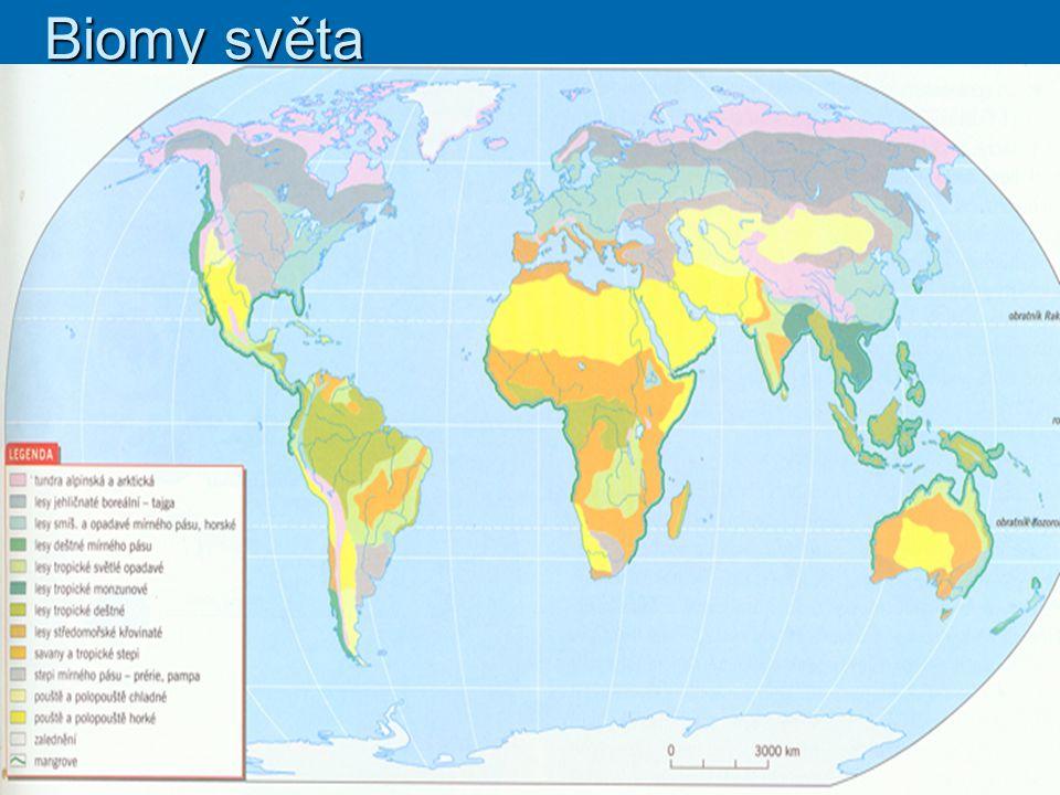 Základní charakteristika:  Severský jehličnatý les je název pro biom, který se vyskytuje především v severních zeměpisných šířkách.