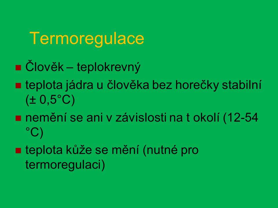 Termoregulace Člověk – teplokrevný teplota jádra u člověka bez horečky stabilní (± 0,5°C) nemění se ani v závislosti na t okolí (12-54 °C) teplota kůže se mění (nutné pro termoregulaci)