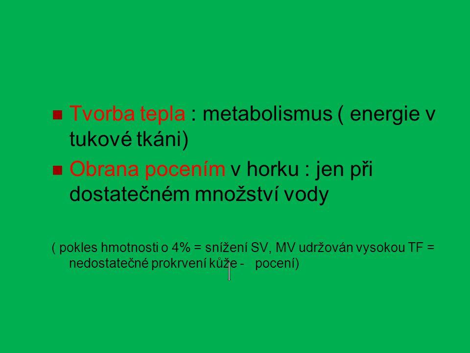 Tvorba tepla : metabolismus ( energie v tukové tkáni) Obrana pocením v horku : jen při dostatečném množství vody ( pokles hmotnosti o 4% = snížení SV, MV udržován vysokou TF = nedostatečné prokrvení kůže - pocení)