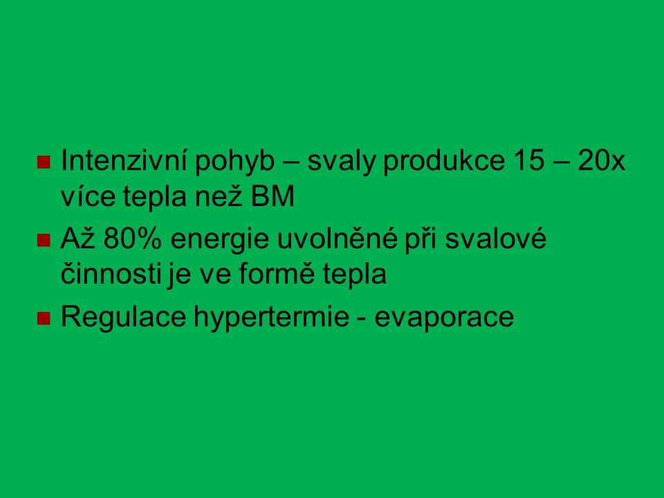 Intenzivní pohyb – svaly produkce 15 – 20x více tepla než BM Až 80% energie uvolněné při svalové činnosti je ve formě tepla Regulace hypertermie - evaporace