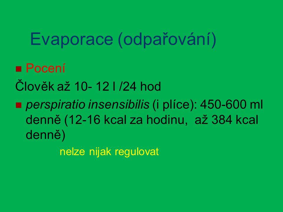 Evaporace (odpařování) Pocení Člověk až 10- 12 l /24 hod perspiratio insensibilis (i plíce): 450-600 ml denně (12-16 kcal za hodinu, až 384 kcal denně) nelze nijak regulovat