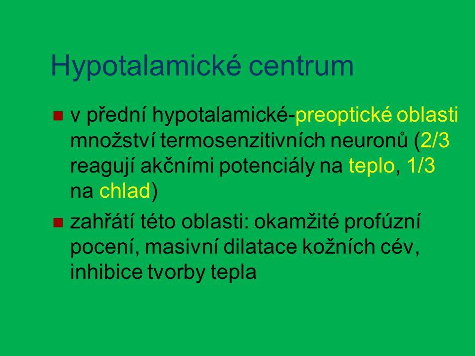 Hypotalamické centrum v přední hypotalamické-preoptické oblasti množství termosenzitivních neuronů (2/3 reagují akčními potenciály na teplo, 1/3 na chlad) zahřátí této oblasti: okamžité profúzní pocení, masivní dilatace kožních cév, inhibice tvorby tepla