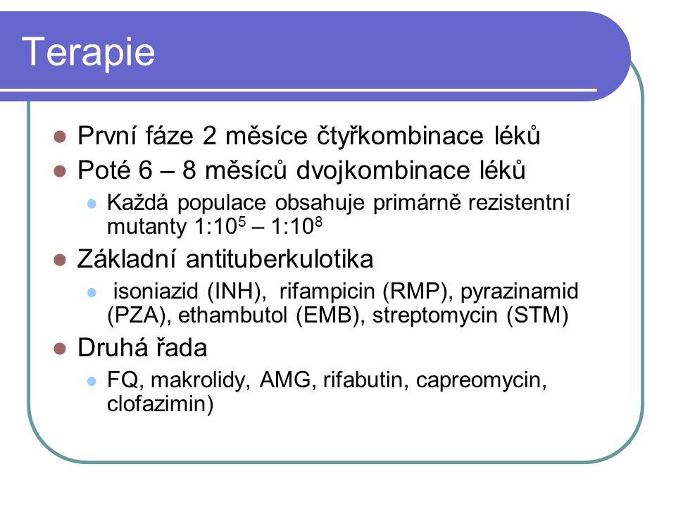 Terapie První fáze 2 měsíce čtyřkombinace léků Poté 6 – 8 měsíců dvojkombinace léků Každá populace obsahuje primárně rezistentní mutanty 1:10 5 – 1:10