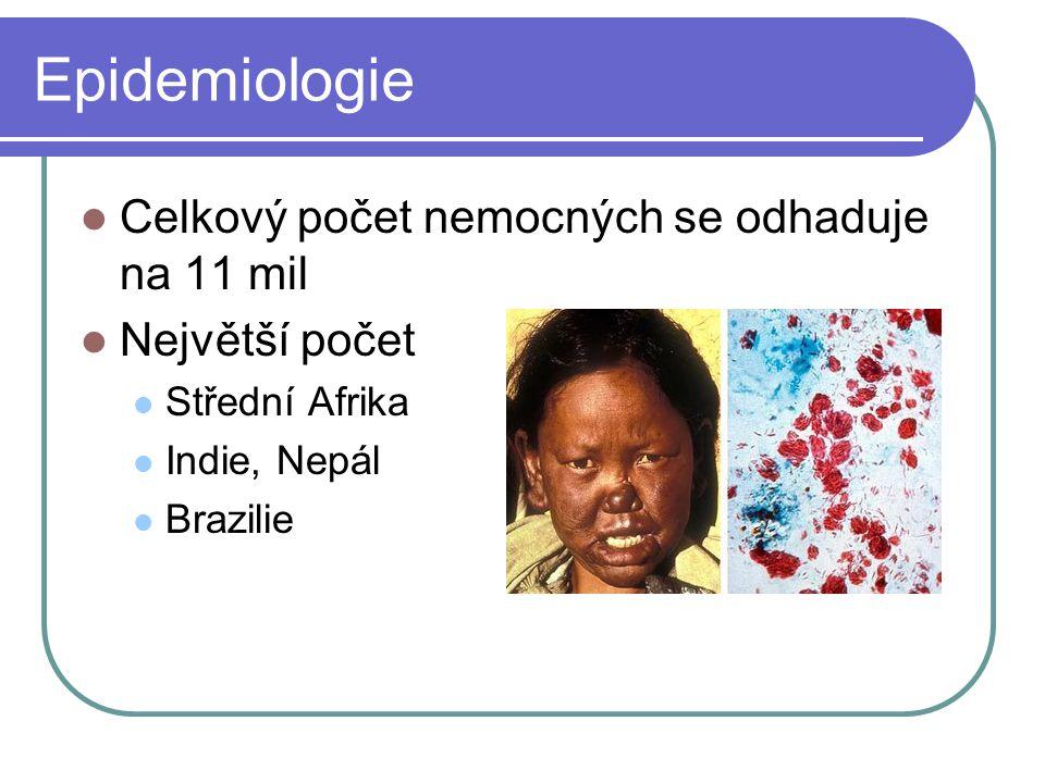 Epidemiologie Celkový počet nemocných se odhaduje na 11 mil Největší počet Střední Afrika Indie, Nepál Brazilie