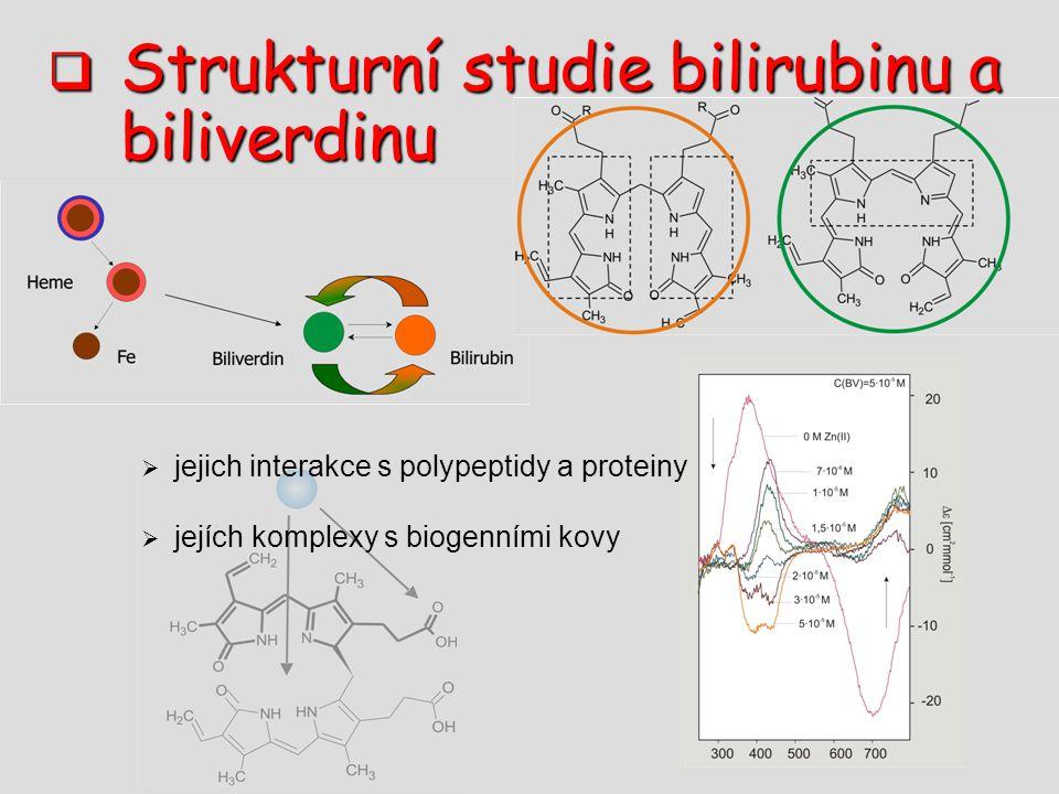 Strukturní studie bilirubinu a biliverdinu  jejich interakce s polypeptidy a proteiny  jejích komplexy s biogenními kovy