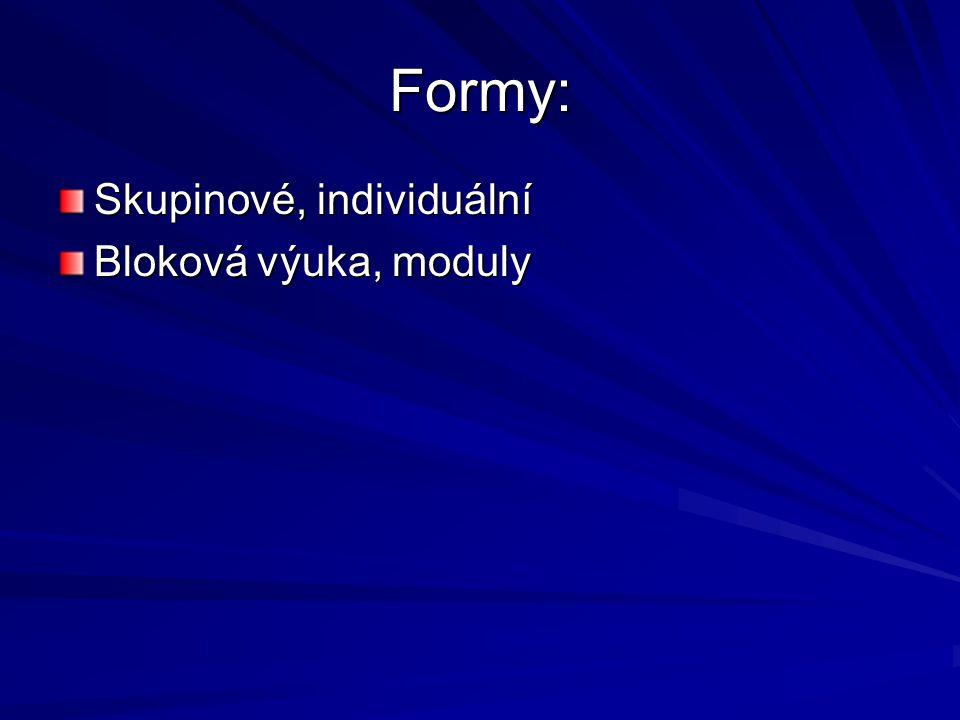 Formy: Skupinové, individuální Bloková výuka, moduly