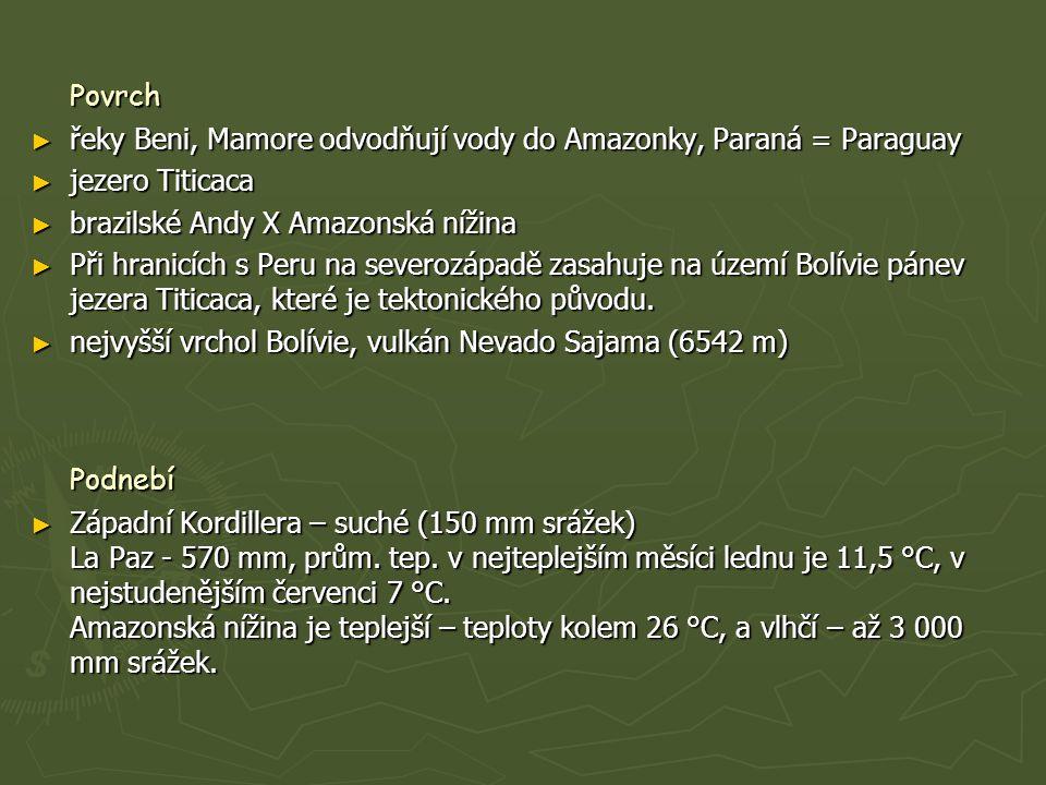 Povrch ► řeky Beni, Mamore odvodňují vody do Amazonky, Paraná = Paraguay ► jezero Titicaca ► brazilské Andy X Amazonská nížina ► Při hranicích s Peru na severozápadě zasahuje na území Bolívie pánev jezera Titicaca, které je tektonického původu.
