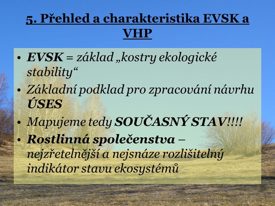 """5. Přehled a charakteristika EVSK a VHP EVSK = základ """"kostry ekologické stability"""" Základní podklad pro zpracování návrhu ÚSES Mapujeme tedy SOUČASNÝ"""
