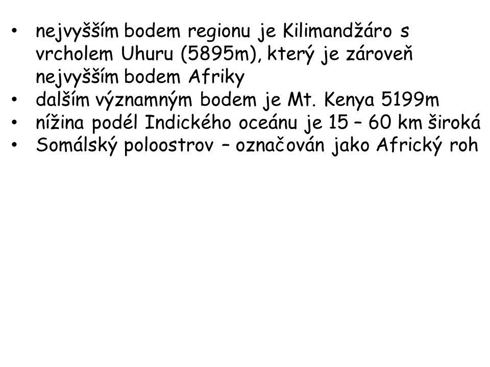 M T. K ENYA 2