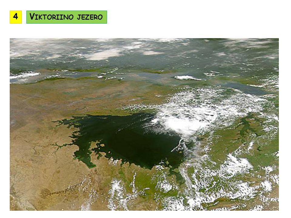 převažuje tropické podnebí v horách vyvinuty výškové podnebné stupně nejchladnější a nejdeštivější je Etiopská vysočina nejsušší je pouštní oblast Somálska nachází se zde převážně travnaté a křovinaté savany ve vyšších polohách jsou horské stepi v nížinách najdeme tropické pralesy v údolích řek Etiopské vysočiny jsou galeriové lesy v regionu žije velké množství divoké zvěře P ODNEBÍ B IOTA