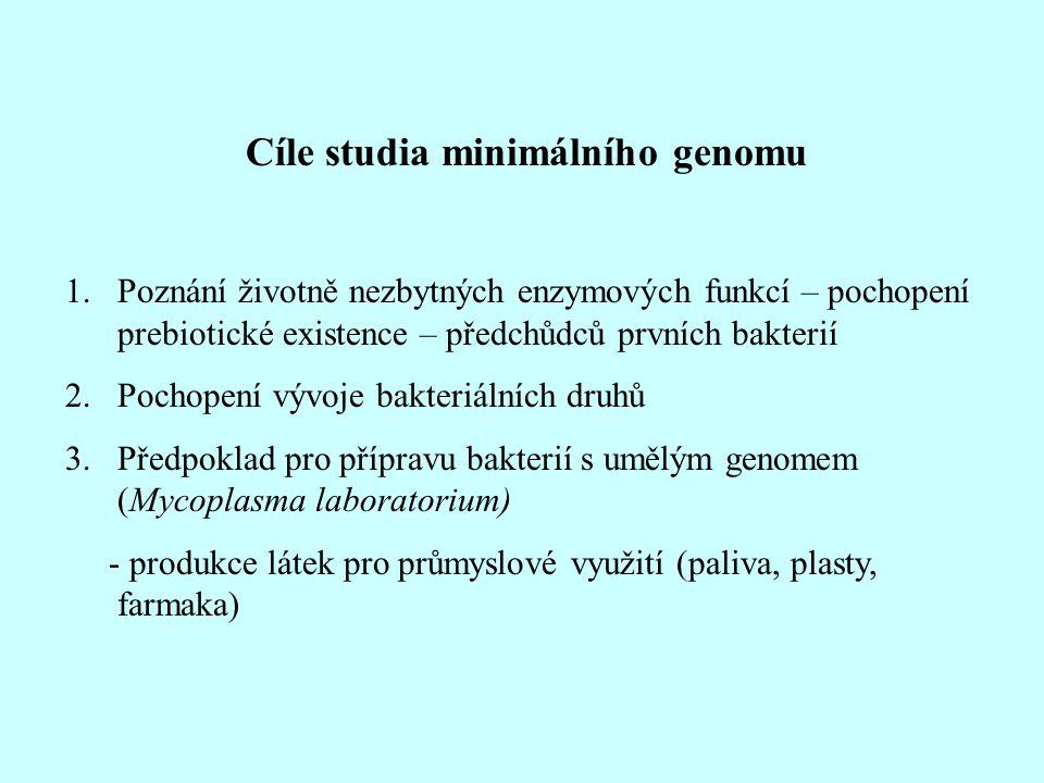 Cíle studia minimálního genomu 1.Poznání životně nezbytných enzymových funkcí – pochopení prebiotické existence – předchůdců prvních bakterií 2.Pochop