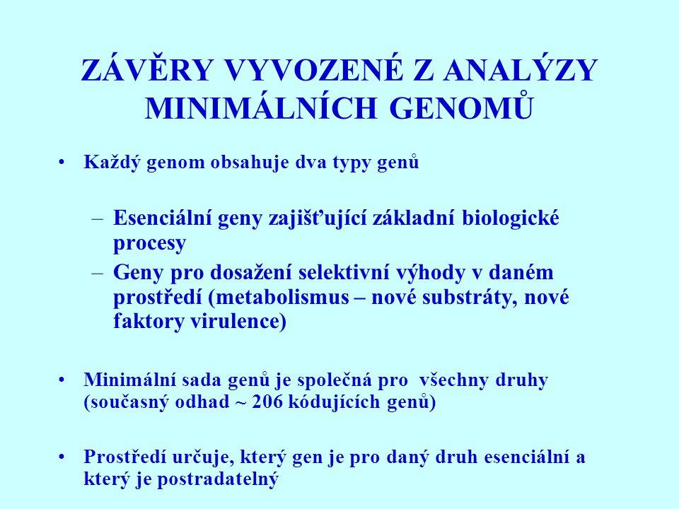 ZÁVĚRY VYVOZENÉ Z ANALÝZY MINIMÁLNÍCH GENOMŮ Každý genom obsahuje dva typy genů –Esenciální geny zajišťující základní biologické procesy –Geny pro dos