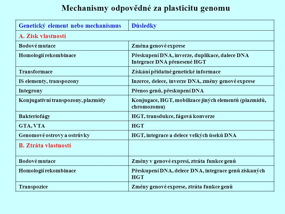 Mechanismy odpovědné za plasticitu genomu Genetický element nebo mechanismusDůsledky A. Zisk vlastností Bodové mutaceZměna genové exprese Homologií re