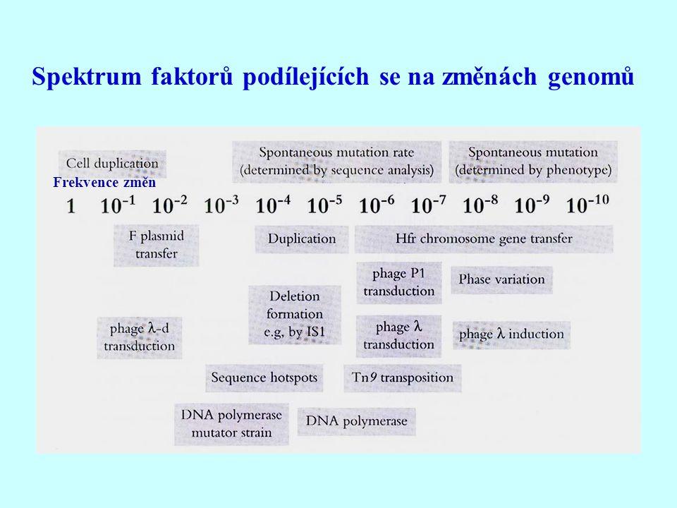 Spektrum faktorů podílejících se na změnách genomů Frekvence změn