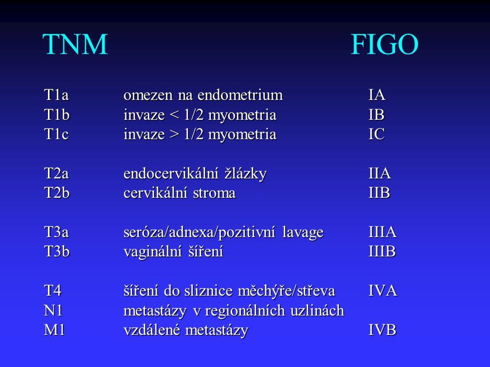 TNM FIGO T1aomezen na endometriumIA T1binvaze < 1/2 myometriaIB T1cinvaze > 1/2 myometriaIC T2aendocervikální žlázkyIIA T2bcervikální stromaIIB T3aser