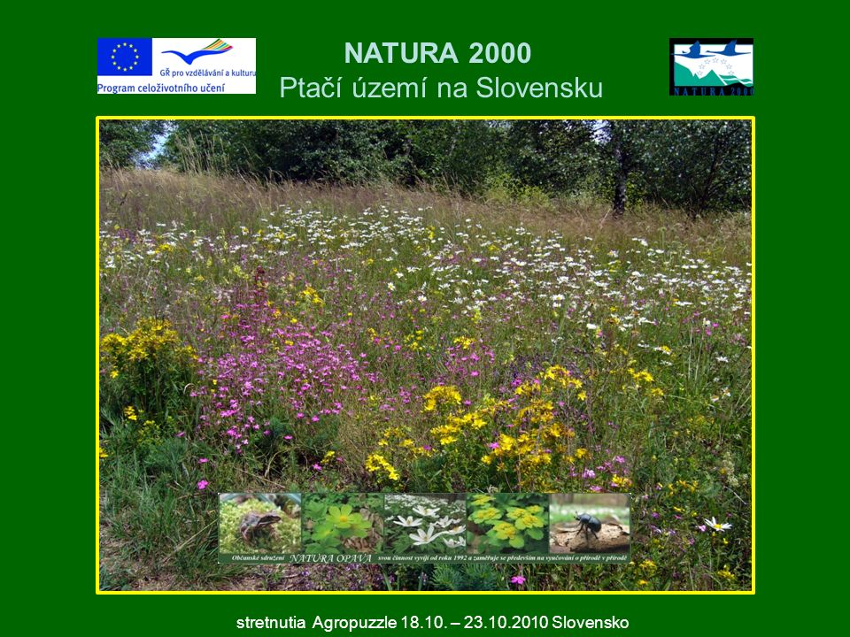 NATURA 2000 Ptačí území na Slovensku stretnutia Agropuzzle 18.10. – 23.10.2010 Slovensko