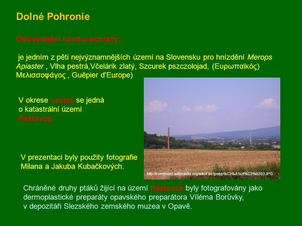Dolné Pohronie Odůvodnění návrhu ochrany: je jedním z pěti nejvýznamnějších území na Slovensku pro hnízdění Merops Apiaster, Vlha pestrá,Včelárik zlat