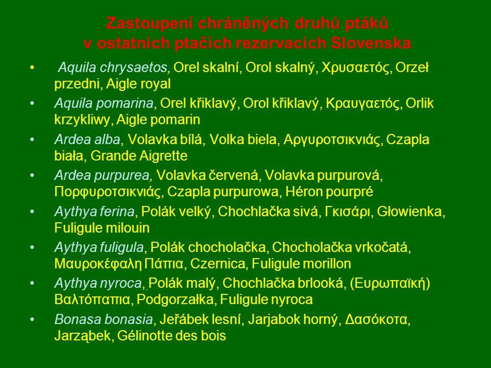 Aquila chrysaetos, Orel skalní, Orol skalný, Χρυσαετός, Orzeł przedni, Aigle royal Aquila pomarina, Orel křiklavý, Orol křiklavý, Κραυγαετός, Orlik kr