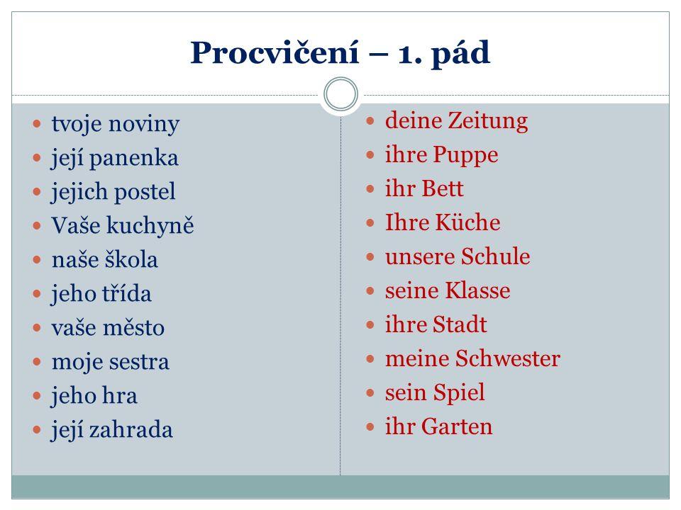 Vyjádření českého svůj v NJ České slovo svůj nemá v NJ jednoslovný překlad. Pro jednotlivé osoby se užívají právě zájmena přivlastňovací. Například Já