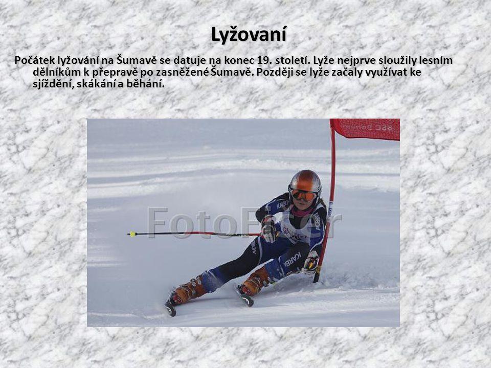 Skisport Seit Ende des 19. Jahrhunderts treibt man im Böhmerwald Skisport. Zuerst dienten die Skier nur den Waldarbeitern als Transportverkehrsmittel