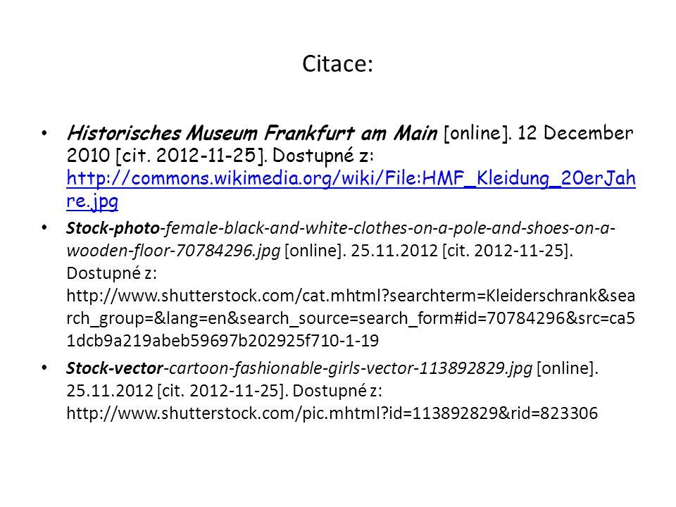 Citace: Historisches Museum Frankfurt am Main [online].