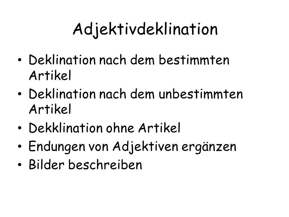 Adjektivdeklination Deklination nach dem bestimmten Artikel Deklination nach dem unbestimmten Artikel Dekklination ohne Artikel Endungen von Adjektiven ergänzen Bilder beschreiben