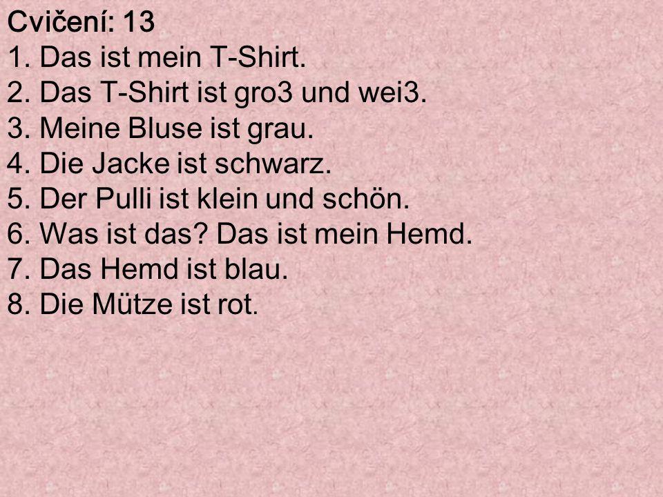 Cvičení: 13 1. Das ist mein T-Shirt. 2. Das T-Shirt ist gro3 und wei3.